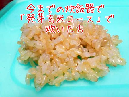 一般的な炊飯器で炊いた自作の発芽玄米